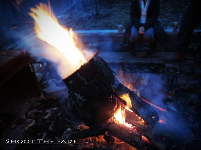 Fire pit copy