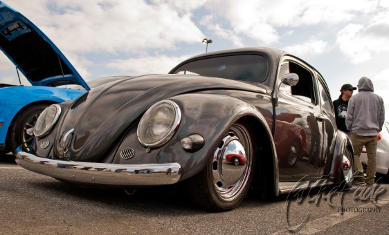 Slammed Beetle copy